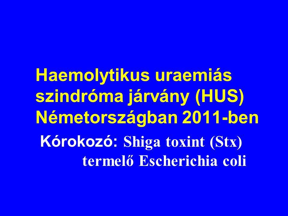 Chicungunya járvány Olaszországban (2007 nyara) 211 beteg. Lappangási idő ált. 4-7 nap Tünetek: Hirtelen magas láz (átl. 3-4 napig tart), fejfájás, ha
