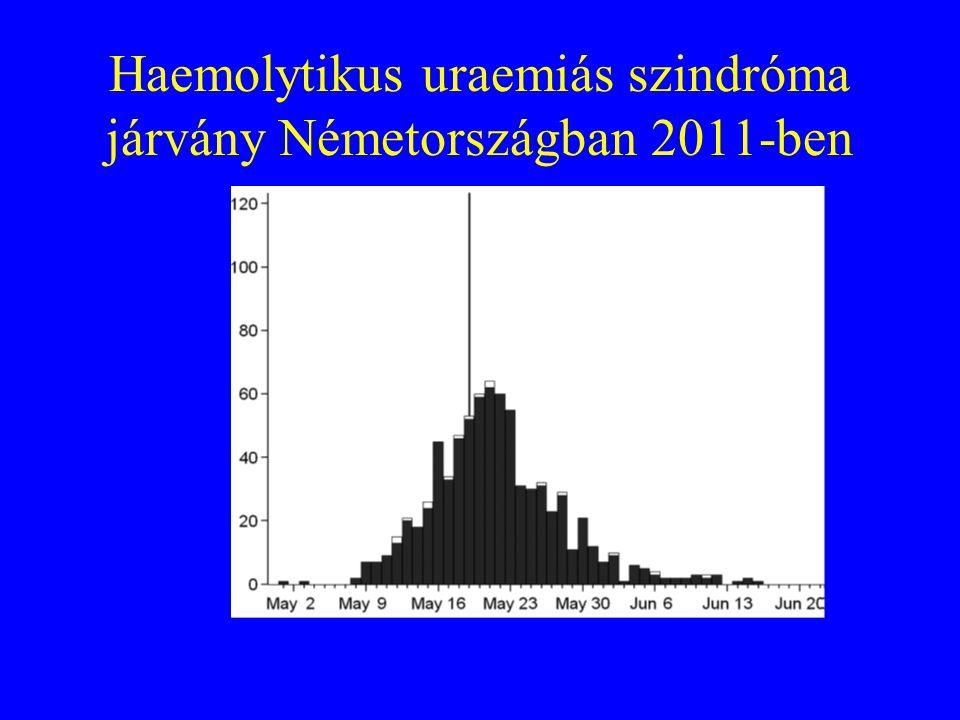 A járványos STEC O104:H4 virulencia faktorai Shiga toxin: haemorrhagiás enteritist, haemolysist, thrombocytopeniát, vesekárosodást okoz Enteroaggregat