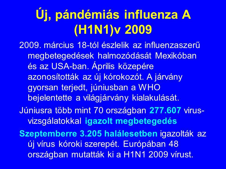TÖRTÉNET 1918-19: H1N1 pandémia A világ lakosságának 0,5 %-a elpusztult 1920-1947: H1N1 szezonális járványok, csökkenő kockázattal 1947-: H1N1 új subt