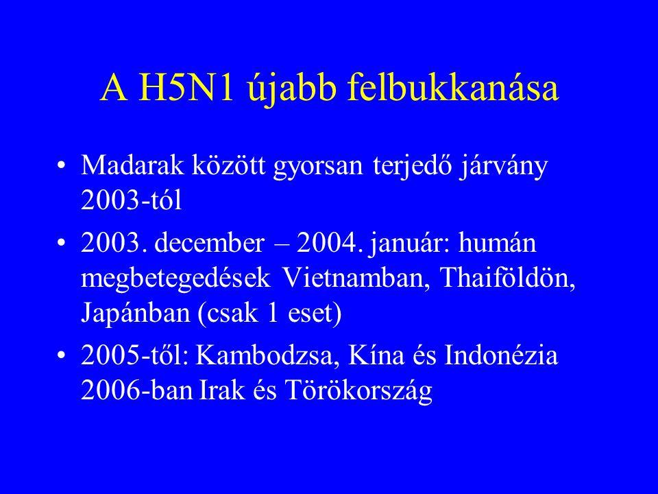 Hong Kong 1997. November - December További 17 igazolt H5N1 eset, 5 meghalt Kor: átlag 17 év, 47 %  5 év (a 6/18 halott közül 5 volt  24 éves) Halál