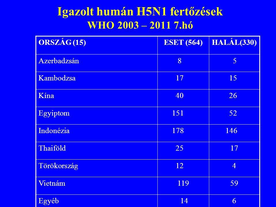 A H5N1 újabb felbukkanása Madarak között gyorsan terjedő járvány 2003-tól 2003. december – 2004. január: humán megbetegedések Vietnamban, Thaiföldön,