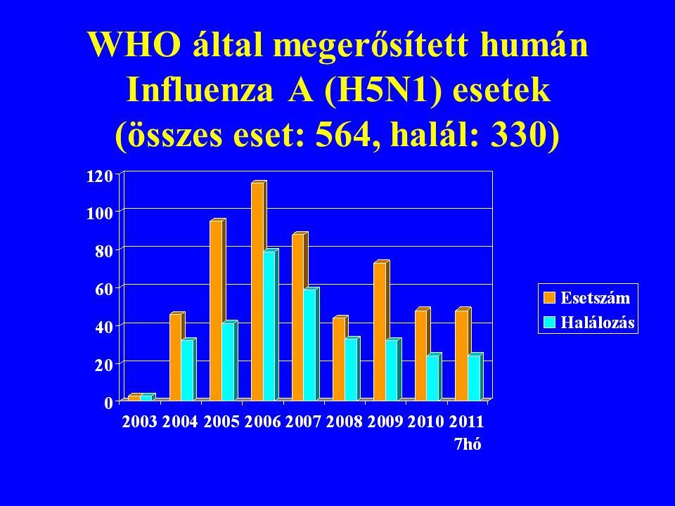 Igazolt humán H5N1 fertőzések WHO 2003 – 2011 7.hó ORSZÁG (15)ESET (564)HALÁL(330) Azerbadzsán 8 5 Kambodzsa 17 15 Kína 40 26 Egyiptom 151 52 Indonézi