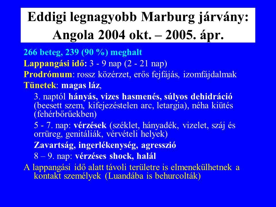 Marburg haemorrhagiás láz Kórokozó: Ebolával rokon filovírus Első észlelés: 1967-ben Európa (Marburg, Frankfurt, Belgrád): Fertőző forrás: Ugandából i