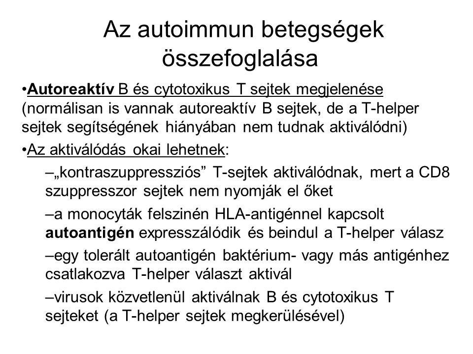 Az autoimmun betegségek összefoglalása Autoreaktív B és cytotoxikus T sejtek megjelenése (normálisan is vannak autoreaktív B sejtek, de a T-helper sej