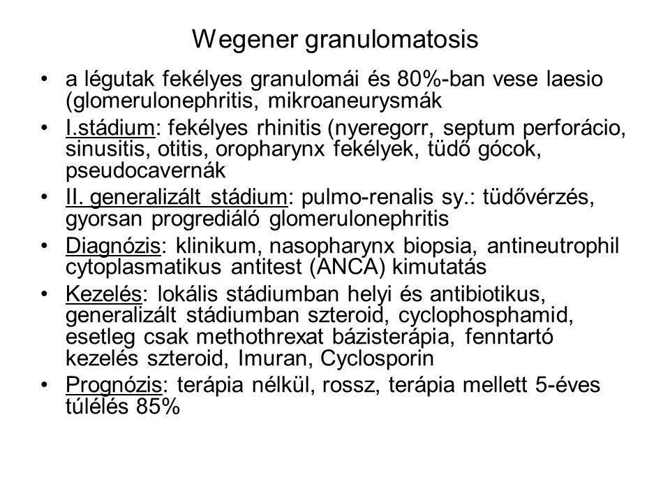 Wegener granulomatosis a légutak fekélyes granulomái és 80%-ban vese laesio (glomerulonephritis, mikroaneurysmák I.stádium: fekélyes rhinitis (nyerego
