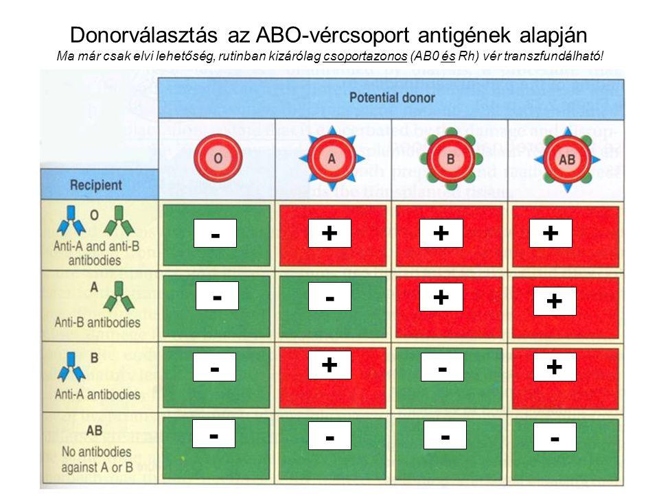 25 Donorválasztás az ABO-vércsoport antigének alapján Ma már csak elvi lehetőség, rutinban kizárólag csoportazonos (AB0 és Rh) vér transzfundálható! -