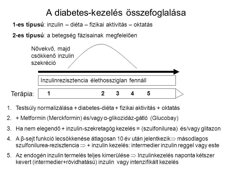 A diabetes-kezelés összefoglalása 1-es típusú: inzulin – diéta – fizikai aktivitás – oktatás 2-es típusú: a betegség fázisainak megfelelően Nővekvő, m
