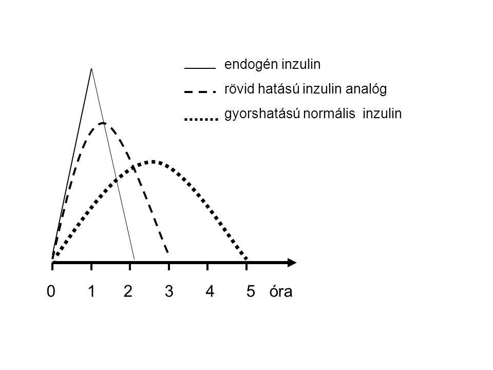 0 1 2 3 4 5 óra endogén inzulin rövid hatású inzulin analóg gyorshatású normális inzulin