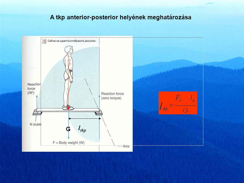 A tkp anterior-posterior helyének meghatározása G l tkp