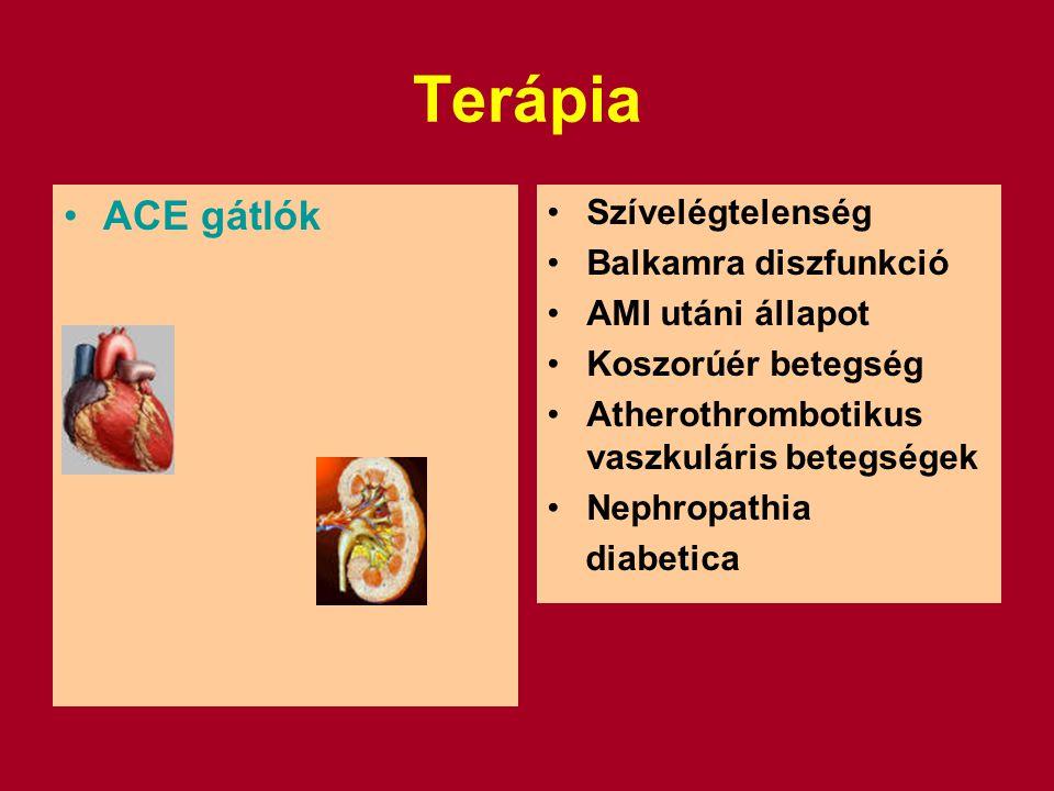 Terápia ACE gátlók Szívelégtelenség Balkamra diszfunkció AMI utáni állapot Koszorúér betegség Atherothrombotikus vaszkuláris betegségek Nephropathia diabetica
