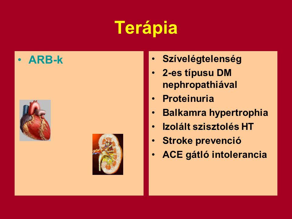 Terápia ARB-k Szívelégtelenség 2-es típusu DM nephropathiával Proteinuria Balkamra hypertrophia Izolált szisztolés HT Stroke prevenció ACE gátló intolerancia