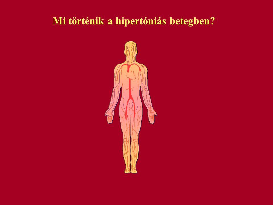 Mi történik a hipertóniás betegben?