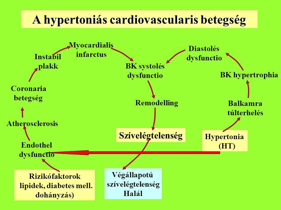 Myocardialis infarctus Instabil plakk Coronaria betegség Atherosclerosis Endothel dysfunctio Rizikófaktorok (lipidek, diabetes mell.