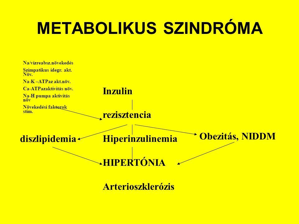 METABOLIKUS SZINDRÓMA Inzulin rezisztencia Hiperinzulinemia HIPERTÓNIA Arterioszklerózis Na/vízreabsz.növekedés Szimpatikus idegr.