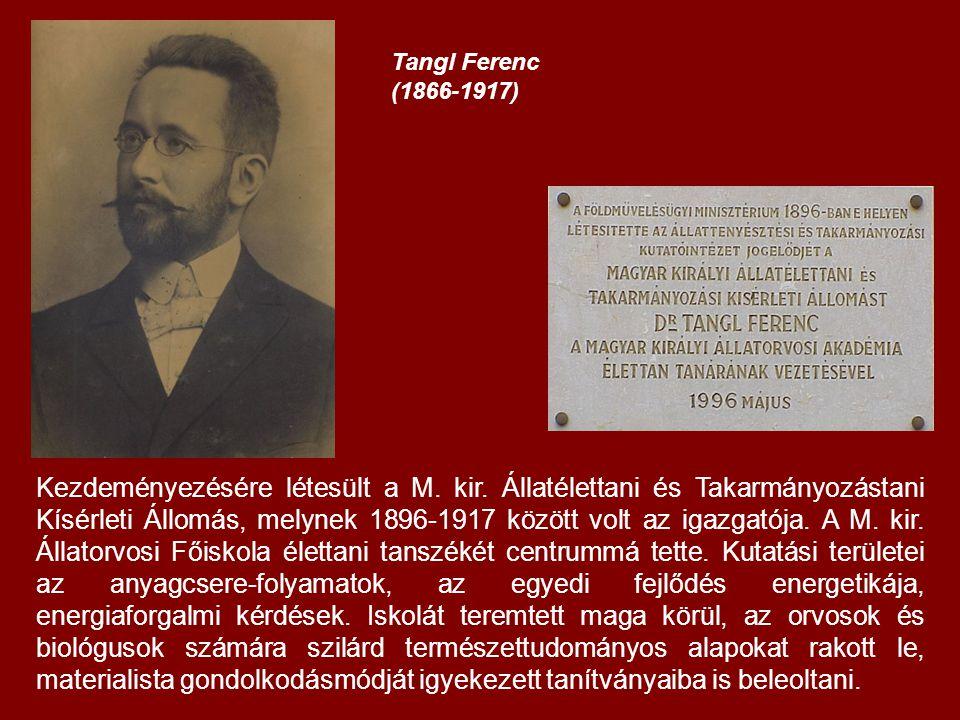 Tangl Ferenc (1866-1917) Kezdeményezésére létesült a M.