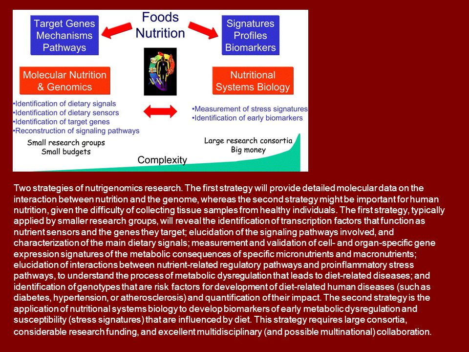 Two strategies of nutrigenomics research. The first strategy will provide detailed molecular data on the interaction between nutrition and the genome,