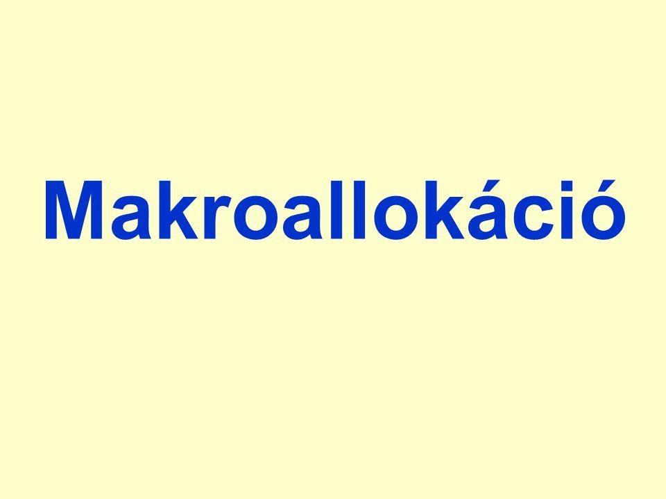 Makroallokáció
