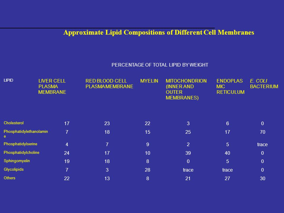 Approximate Lipid Compositions of Different Cell Membranes PERCENTAGE OF TOTAL LIPID BY WEIGHT LIPID LIVER CELL PLASMA MEMBRANE RED BLOOD CELL PLASMA MEMBRANE MYELINMITOCHONDRION (INNER AND OUTER MEMBRANES) ENDOPLAS MIC RETICULUM E.