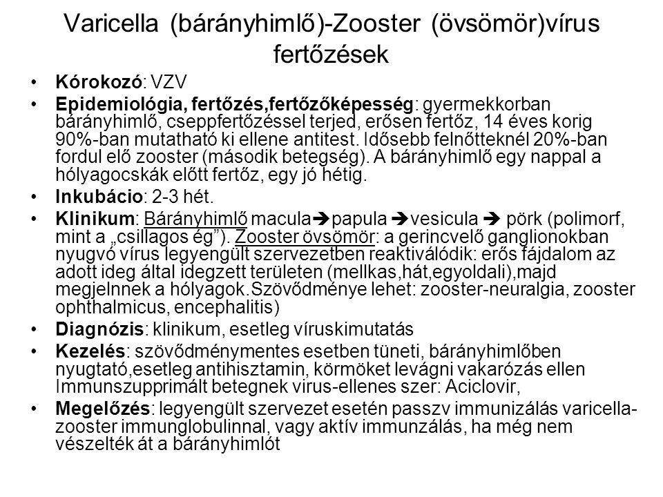 Varicella (bárányhimlő)-Zooster (övsömör)vírus fertőzések Kórokozó: VZV Epidemiológia, fertőzés,fertőzőképesség: gyermekkorban bárányhimlő, cseppfertő