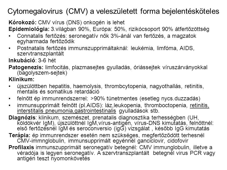 Cytomegalovirus (CMV) a veleszületett forma bejelentésköteles Kórokozó: CMV vírus (DNS) onkogén is lehet Epidemiológia: 3.világban 90%, Európa: 50%, r