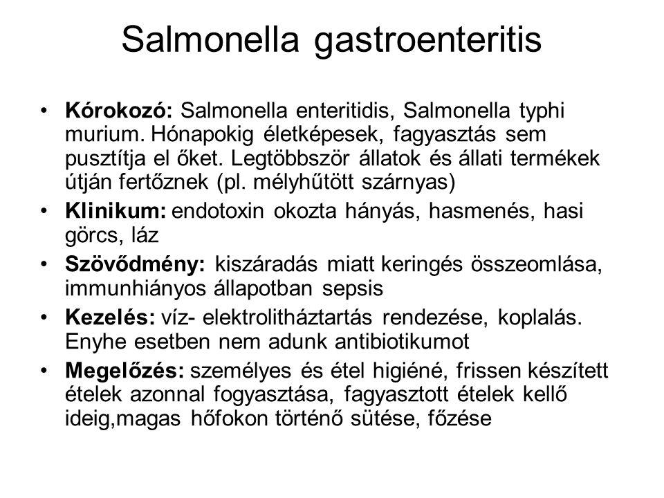 Salmonella gastroenteritis Kórokozó: Salmonella enteritidis, Salmonella typhi murium. Hónapokig életképesek, fagyasztás sem pusztítja el őket. Legtöbb