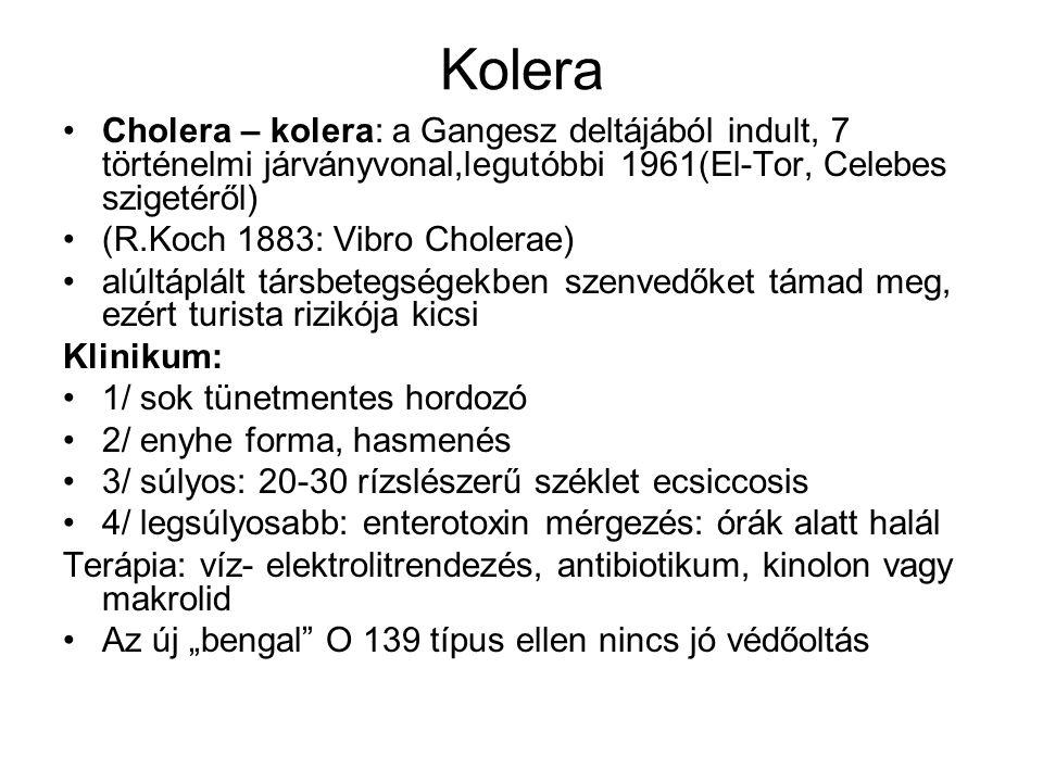 Kolera Cholera – kolera: a Gangesz deltájából indult, 7 történelmi járványvonal,legutóbbi 1961(El-Tor, Celebes szigetéről) (R.Koch 1883: Vibro Cholera