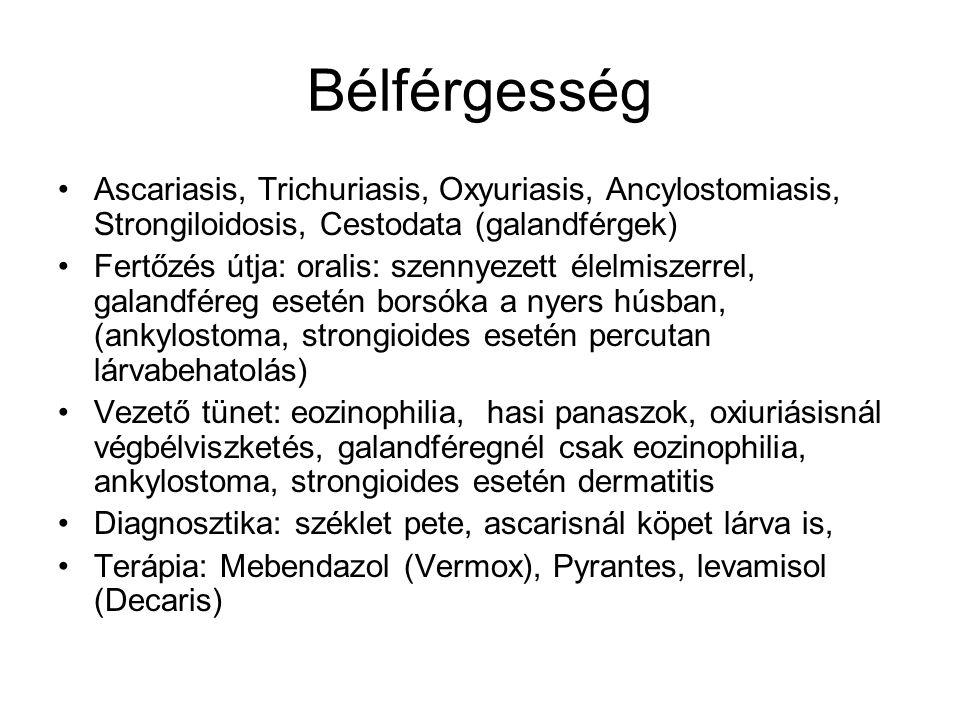 Bélférgesség Ascariasis, Trichuriasis, Oxyuriasis, Ancylostomiasis, Strongiloidosis, Cestodata (galandférgek) Fertőzés útja: oralis: szennyezett élelm