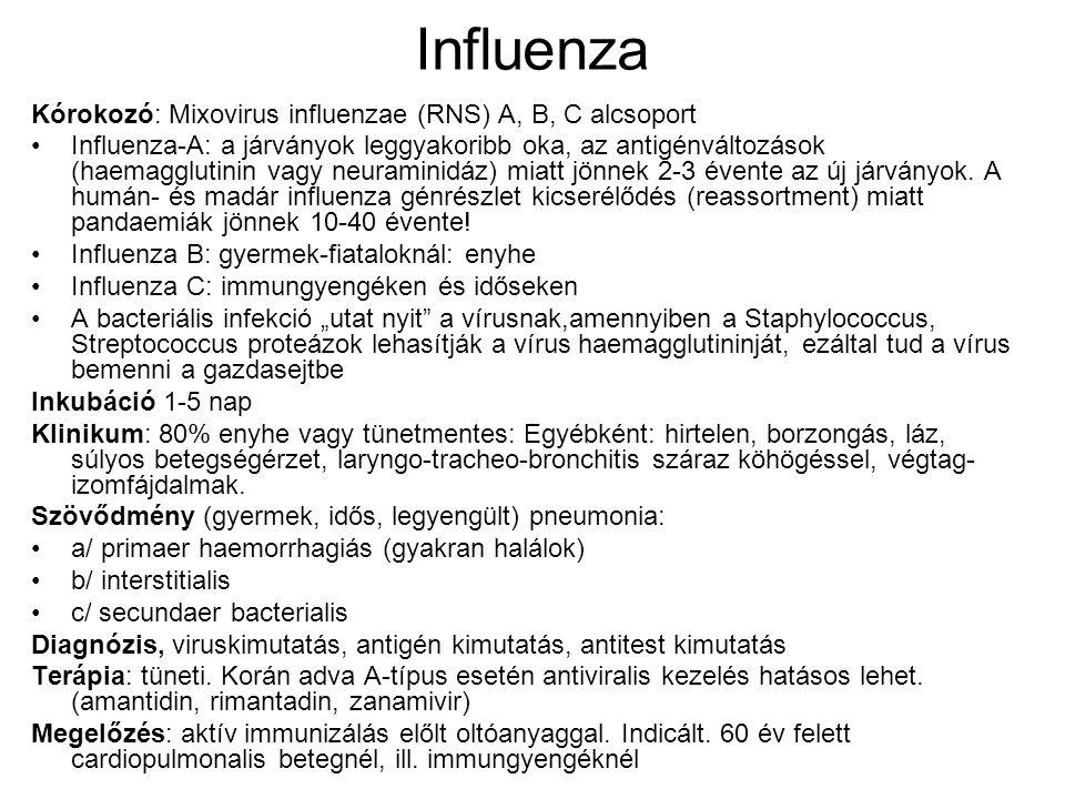 Influenza Kórokozó: Mixovirus influenzae (RNS) A, B, C alcsoport Influenza-A: a járványok leggyakoribb oka, az antigénváltozások (haemagglutinin vagy