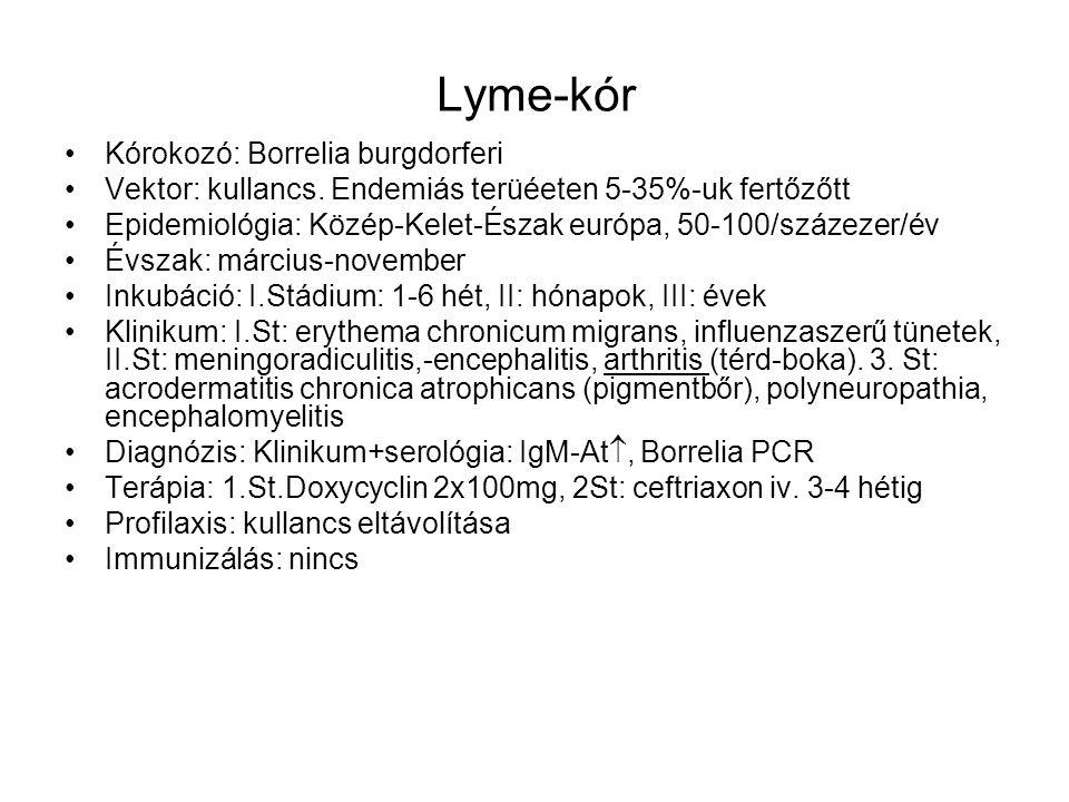 Lyme-kór Kórokozó: Borrelia burgdorferi Vektor: kullancs. Endemiás terüéeten 5-35%-uk fertőzőtt Epidemiológia: Közép-Kelet-Észak európa, 50-100/százez