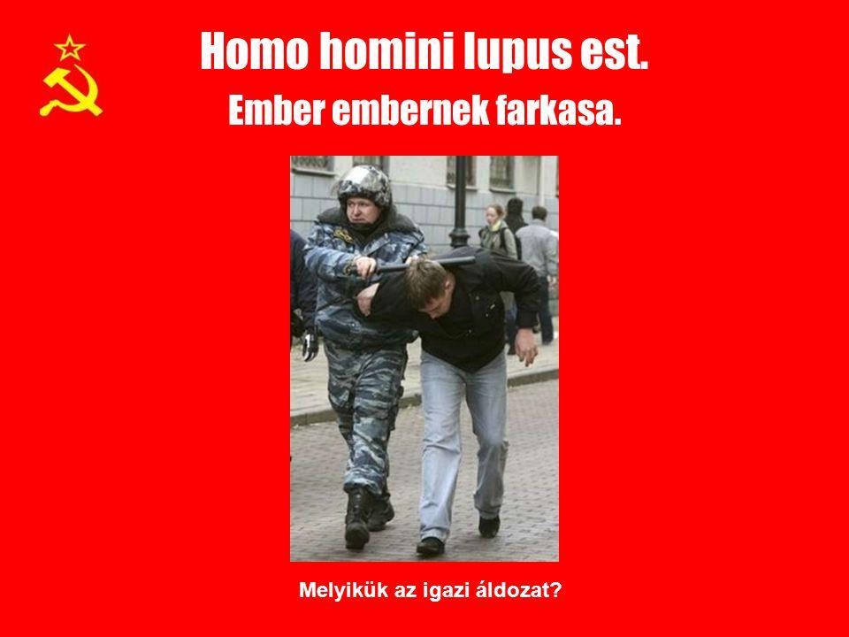 Homo homini lupus est. Ember embernek farkasa. Melyikük az igazi áldozat?