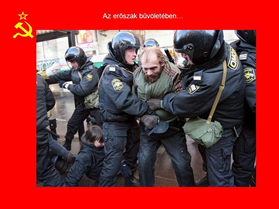 Az erőszak bűvöletében…