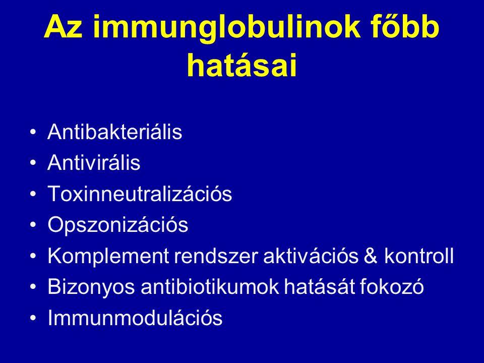 Az immunglobulinok főbb hatásai Antibakteriális Antivirális Toxinneutralizációs Opszonizációs Komplement rendszer aktivációs & kontroll Bizonyos antib