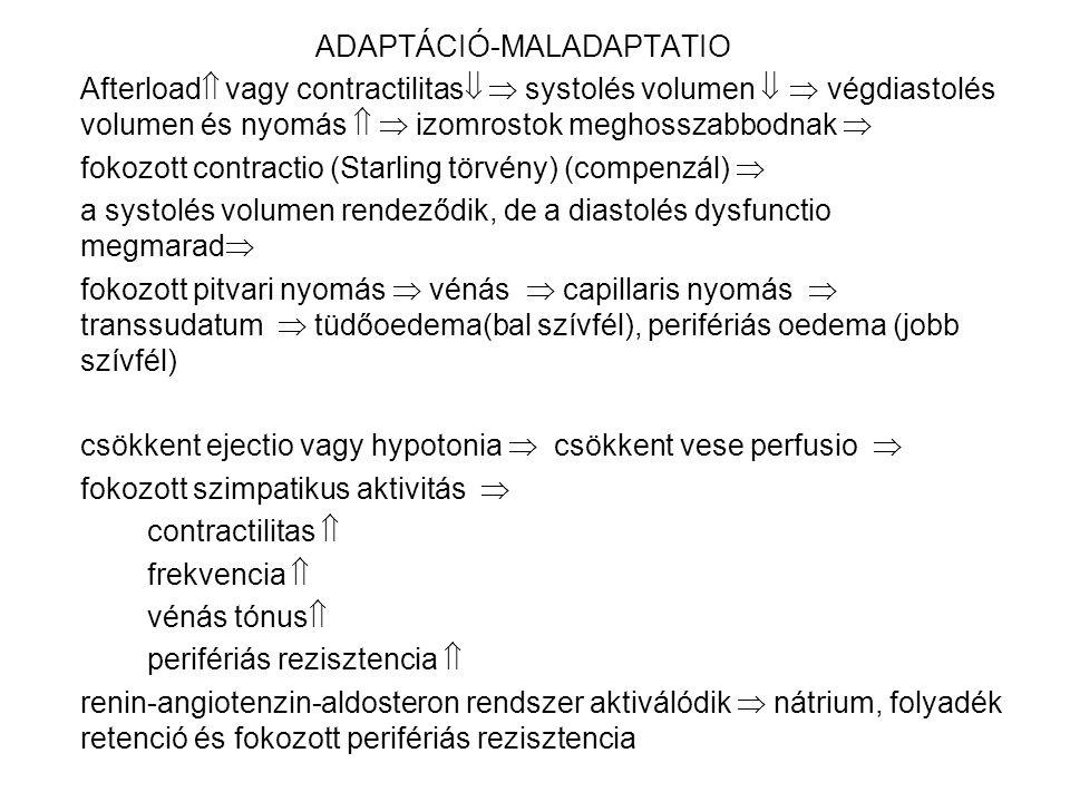 ADAPTÁCIÓ-MALADAPTATIO Afterload  vagy contractilitas   systolés volumen   végdiastolés volumen és nyomás   izomrostok meghosszabbodnak  fokoz