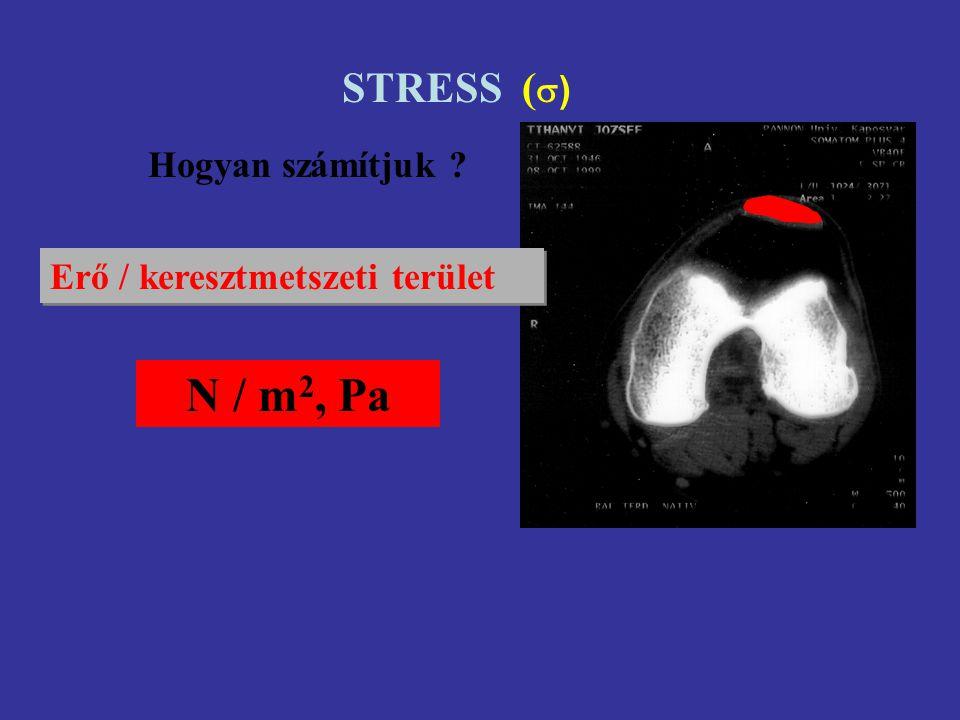NYÚJTÁSI ERŐ MEGNYÚLÁS STRESS - STRAIN STIFFNESS - COMPLIENCE ELASTIKUS/ YOUNG MODULUS NYÚJTÁSI ENERGIA HISZTERÉZIS