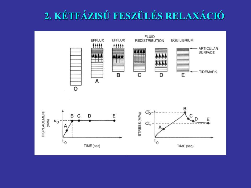 állandó deformációra kezdetben nagy feszülés növekedés jellemzõ, amely fokozatosan csökken az egyensúlyi állapotig 2. KÉTFÁZISÚ FESZÜLÉS RELAXÁCIÓ akk