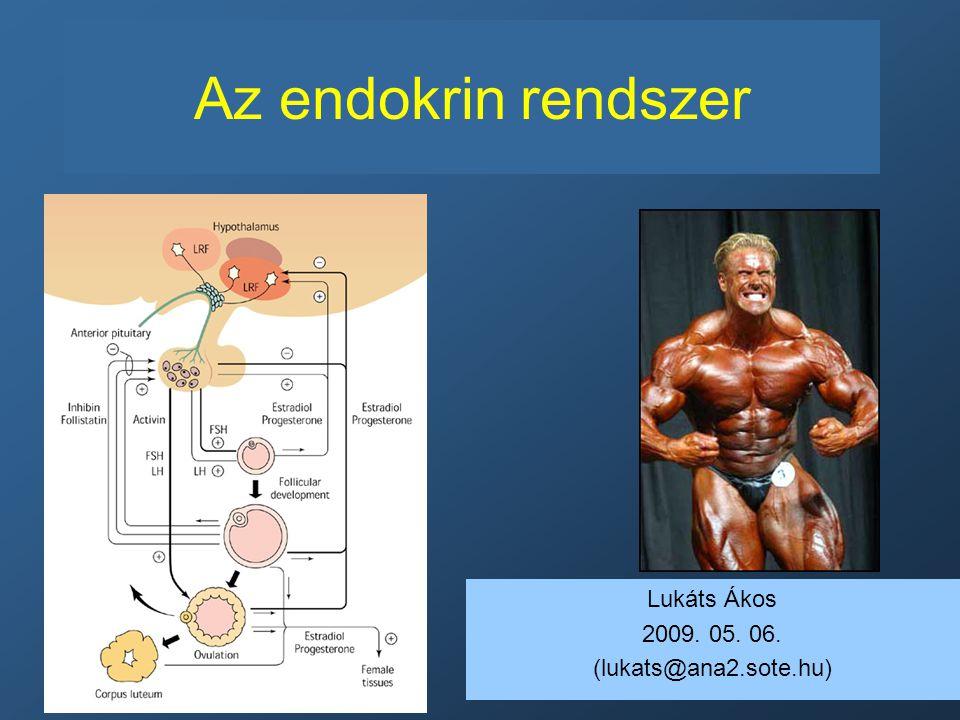Az endokrin rendszer Lukáts Ákos 2009. 05. 06. (lukats@ana2.sote.hu)