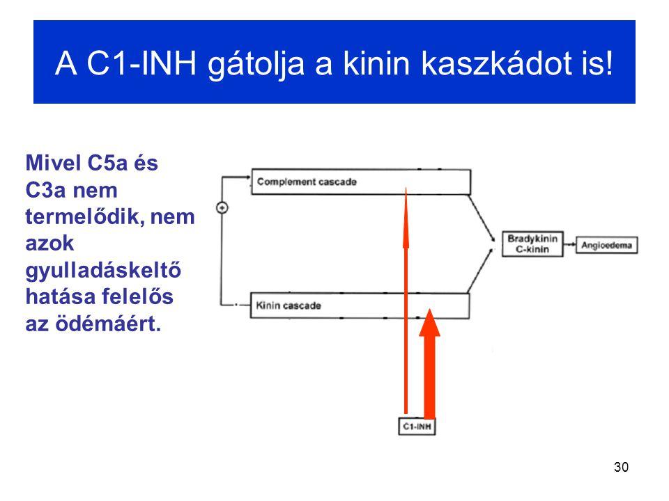 30 A C1-INH gátolja a kinin kaszkádot is! Mivel C5a és C3a nem termelődik, nem azok gyulladáskeltő hatása felelős az ödémáért.