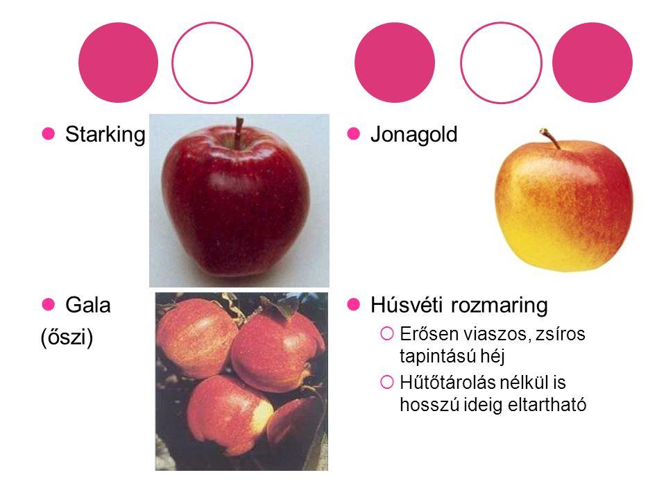 Starking Jonagold Gala (őszi) Húsvéti rozmaring  Erősen viaszos, zsíros tapintású héj  Hűtőtárolás nélkül is hosszú ideig eltartható