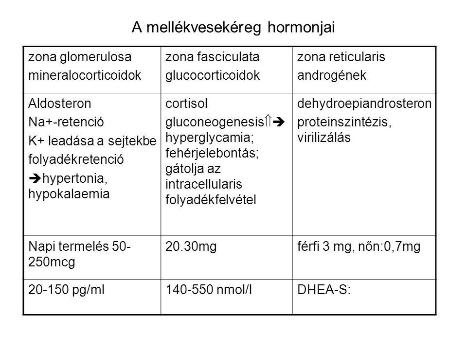 A mellékvesekéreg hormonjai zona glomerulosa mineralocorticoidok zona fasciculata glucocorticoidok zona reticularis androgének Aldosteron Na+-retenció