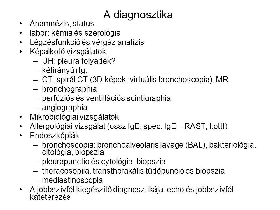 A diagnosztika Anamnézis, status labor: kémia és szerológia Légzésfunkció és vérgáz analízis Képalkotó vizsgálatok: –UH: pleura folyadék? –kétirányú r