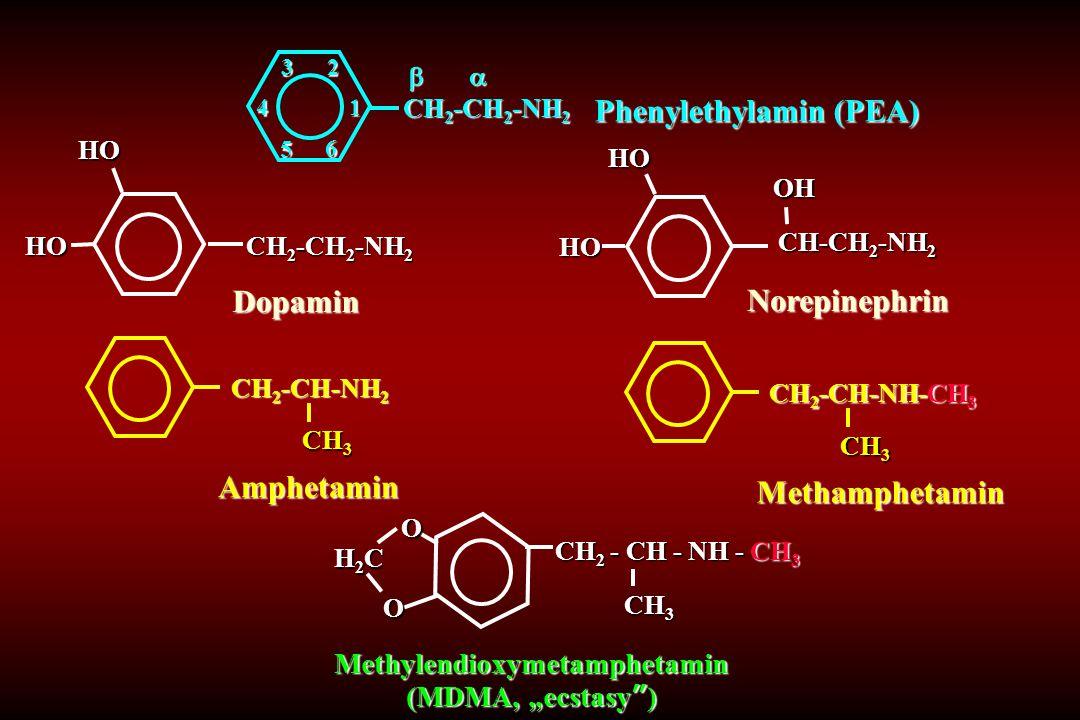 Phenylethylamin (PEA) 1234 5 6   CH 2 -CH 2 -NH 2   CH 2 -CH 2 -NH 2 Dopamin CH 2 -CH 2 -NH 2 HOHO Amphetamin CH 2 -CH-NH 2 CH 3 Norepinephrin CH-