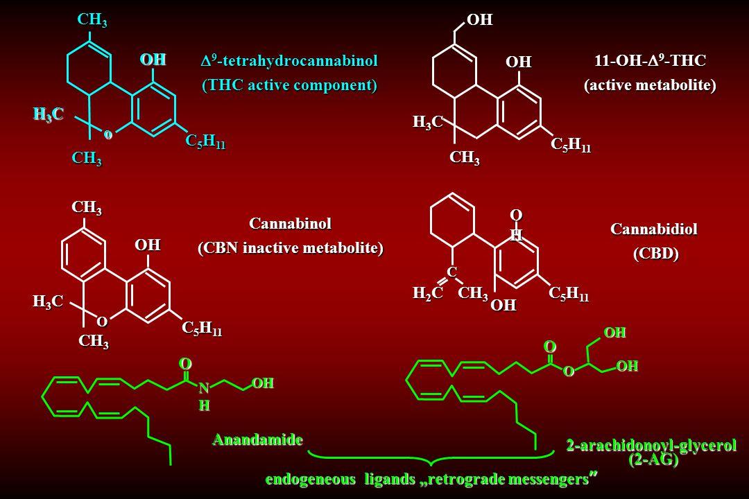 Anandamide NHNHNHNH O OH Cannabidiol (CBD) (CBD) CH 3 H2CH2CH2CH2C C 5 H 11 OH OHOHOHOH C  9 -tetrahydrocannabinol (THC active component) CH 3 H3CH3C