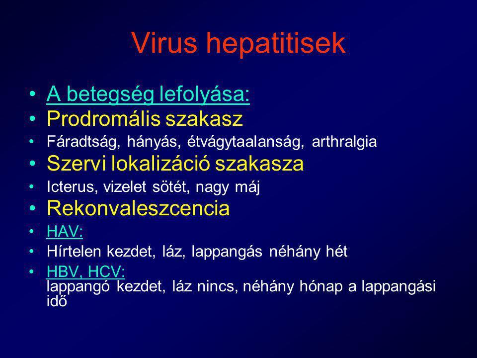 Virus hepatitisek A betegség lefolyása: Prodromális szakasz Fáradtság, hányás, étvágytaalanság, arthralgia Szervi lokalizáció szakasza Icterus, vizele