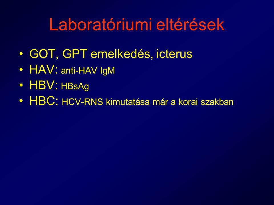 Laboratóriumi eltérések GOT, GPT emelkedés, icterus HAV: anti-HAV IgM HBV: HBsAg HBC: HCV-RNS kimutatása már a korai szakban