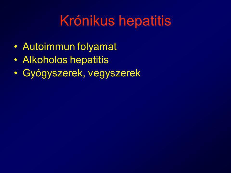 Krónikus hepatitis Autoimmun folyamat Alkoholos hepatitis Gyógyszerek, vegyszerek