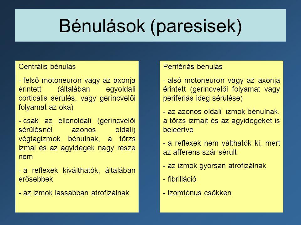 Bénulások (paresisek) Centrális bénulás - felső motoneuron vagy az axonja érintett (általában egyoldali corticalis sérülés, vagy gerincvelői folyamat