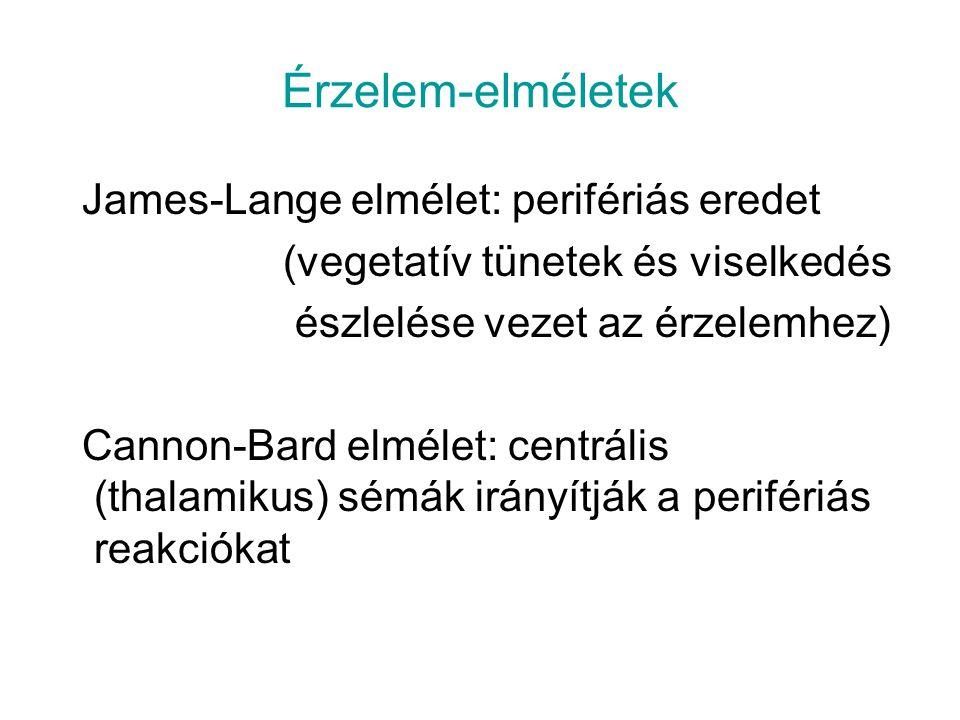 Érzelem-elméletek James-Lange elmélet: perifériás eredet (vegetatív tünetek és viselkedés észlelése vezet az érzelemhez) Cannon-Bard elmélet: centrális (thalamikus) sémák irányítják a perifériás reakciókat