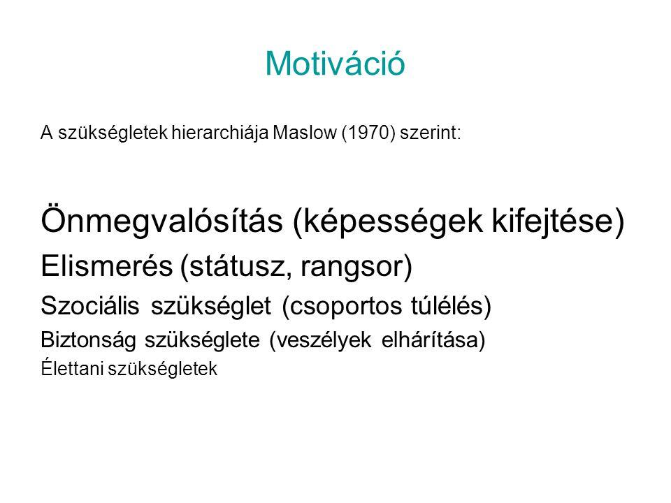 Motiváció A szükségletek hierarchiája Maslow (1970) szerint: Önmegvalósítás (képességek kifejtése) Elismerés (státusz, rangsor) Szociális szükséglet (csoportos túlélés) Biztonság szükséglete (veszélyek elhárítása) Élettani szükségletek