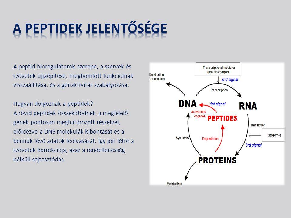 A peptid bioregulátorok szerepe, a szervek és szövetek újjáépítése, megbomlott funkcióinak visszaállítása, és a génaktivitás szabályozása.