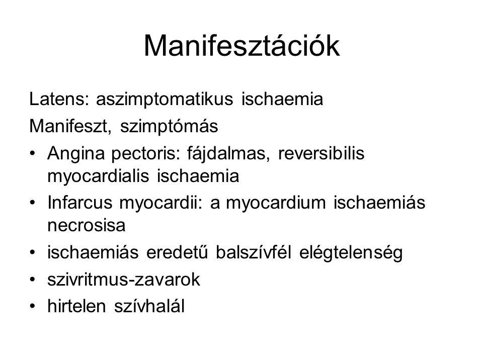 Manifesztációk Latens: aszimptomatikus ischaemia Manifeszt, szimptómás Angina pectoris: fájdalmas, reversibilis myocardialis ischaemia Infarcus myocar